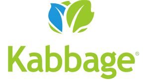 Kabbage Microloans